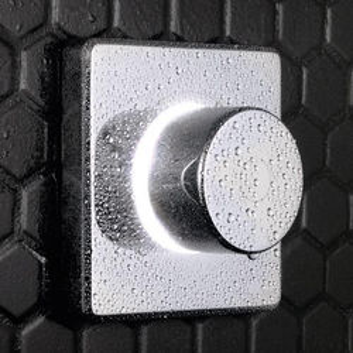 Digital Showers Digital Shower Valve & Processor Unit (1 Outlet, LP).