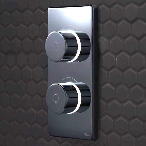 Digital Showers Digital Shower / Bath Valve & Processor (2 Outlets, LP).