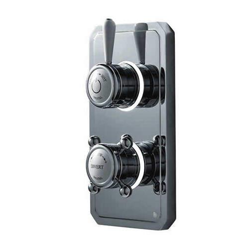 Digital Showers Digital Shower / Shower Valve & Processor (2 Outlets, LP).