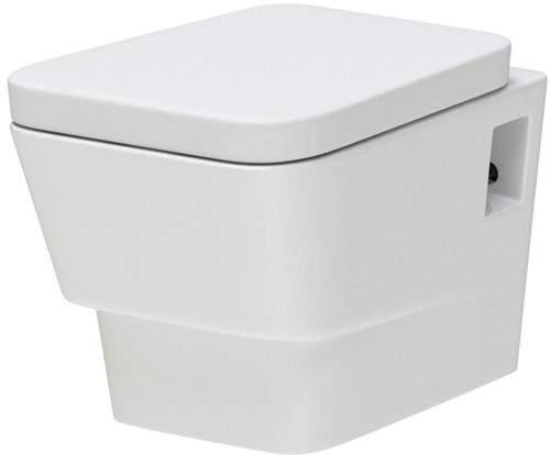 Hudson Reed Ceramics Wall Hung Toilet Pan With Soft Close Seat.