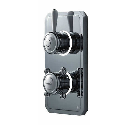 "Additional image for Twin Digital Shower Pack, Slide Rail, 6"" Head & Remote (HP)."