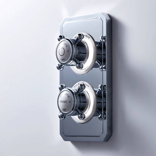 Additional image for Dual Outlet Digital Shower Valve (X-Head, LP).