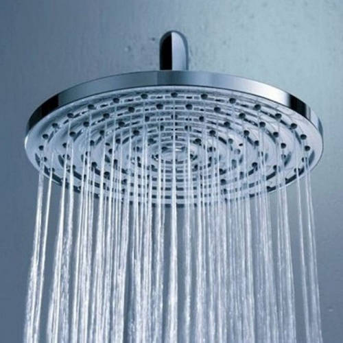 Additional image for Raindance S 180 Shower Head & Arm (180mm, Chrome).