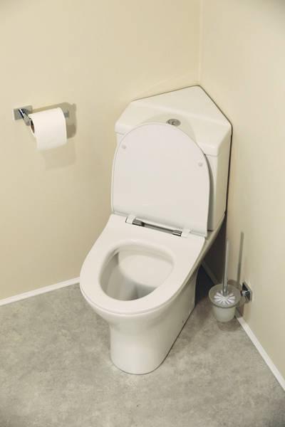 Additional image for Spek Bathroom Suite, Corner Toilet, Seat, Corner Basin & Pedestal.