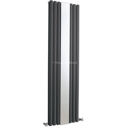 Additional image for Revive Mirror Radiator (Double Panel). 499x1800.